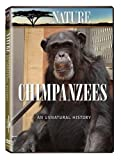 Nature: Chimpanzees - An Unnatural History by Allison Argo