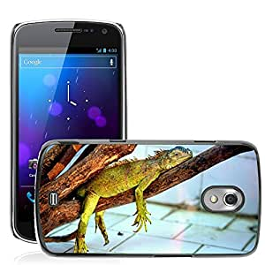 Hot Style Cell Phone PC Hard Case Cover // M00108103 Animals Lizard Scaly Pet Reptile // Samsung Galaxy Nexus GT-i9250 i9250