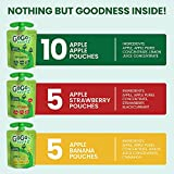GoGo squeeZ Fruit on the Go Variety