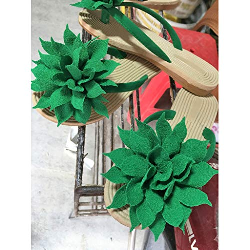 Tongs Vert De Femmes Mode Plage Femmes DAHU Plat Sandales Pantoufles Sandales Chaussures FqZptFxwrf