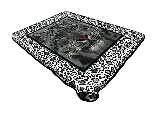 American Linen & Rugs All American Collection New Super Soft Animal Printed Throw Blanket Anna (King Size, Leopard) price tips cheap