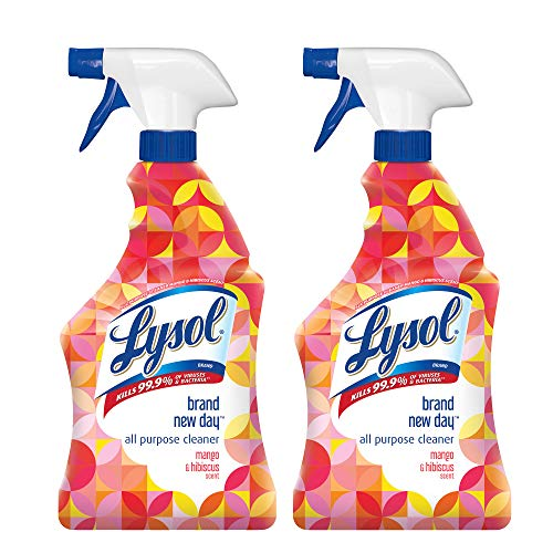Lysol All Purpose Cleaner - Trigger Brand New DayTM Mango & Hibiscus 22 oz (Pack of 2)