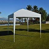 Impact Canopy 10' x 10' Canopy Tent Gazebo with