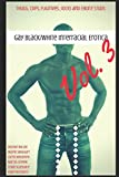 img - for Gay Black/White Interracial Erotica, Vol. 3: Thugs, Cops, Fugitives, Jocks and Ebony Studs (The Swirl Factory) book / textbook / text book
