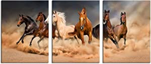 Nachic Wall 3 Piece Animal Canvas Wall Art Running Horses Picture Painting Prints for Home Living Room Bedroom Decor Gallery Canvas Wrapped Ready to Hang 12x16inchx3pcs
