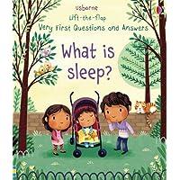 What is Sleep?
