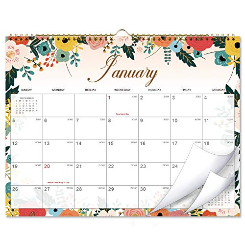 Calendar 2020 - Monthly Wall Calendar with Thick Paper, 15' x 11.5', Twin-Wire Binding + Hanging...