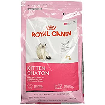 royal canin breed health nutrition persian dry cat food 7 pound dry pet food. Black Bedroom Furniture Sets. Home Design Ideas