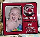 South Carolina Gamecocks Born
