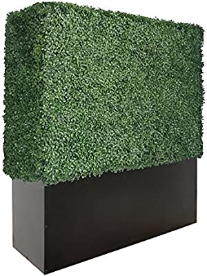 artigwall separador de boj artificial de pared con maceta caja separador (48h48l12d): Amazon.es: Jardín