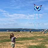 Mint's Colorful Life Butterfly Kite