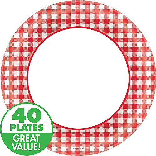 Disposable Classic Picnic Red Gingham Border Round Plates Party Tableware, 40 Pieces, Made from Paper, Picnic and Barnyard Party Theme, 10