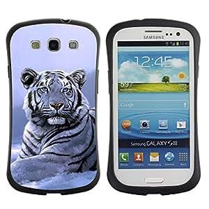 Suave TPU Caso Carcasa de Caucho Funda para Samsung Galaxy S3 I9300 / Winter Snow Tiger White Blue Cold / STRONG