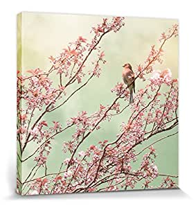Blossoms Stretched Canvas Print - Chaffinch Sitting On A Twig, Ros Berryman (16 x 16 inches)