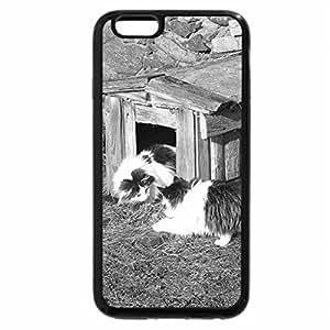 iPhone 6S Plus Case, iPhone 6 Plus Case (Black & White) - Rendez-vous in dog`s house.