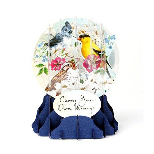 3D Snow Globe - Bird Trio - All Occasion Card ()