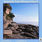 Seashells from Miramar Beach | Dr. Miles O'Brien Riley PhD