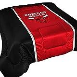 NBA Chicago Bulls Twin Comforter Sidelines