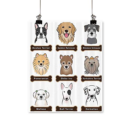 painting-home Canvas Prints Wall Art Various Type of Dogs Nameplate Bost Terrier Domestic Animal ithful Loyal Artwork for Wall Decor,12