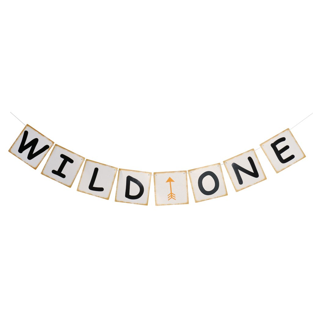 Jili Online WILD ONE Arrow Baby Shower First Birthday Celebration Party Banner Garland Hanging Decor   B06XW9CLJ4