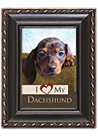 I Love My Dachshund 2x3 Photo Black with Gold Trim Frame with Easel, Ribbon Hanger and Magnetic Back
