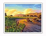 Pacifica Island Art - Vineyard Sunset - Wine Country Art by Kerne Erickson - Fine Art Print - 16in x 20in