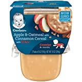 3rd baby food - Gerber 3rd Foods Lil Bits Apple & Oatmeal with Cinnamon Baby Food, 5 Ounce Tubs, 2 Count (Pack of 6)