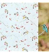 Coavas Privacy Window Film Decorative Bird Window Clings Vinyl No Glue Frosted Glass Sticker for ...