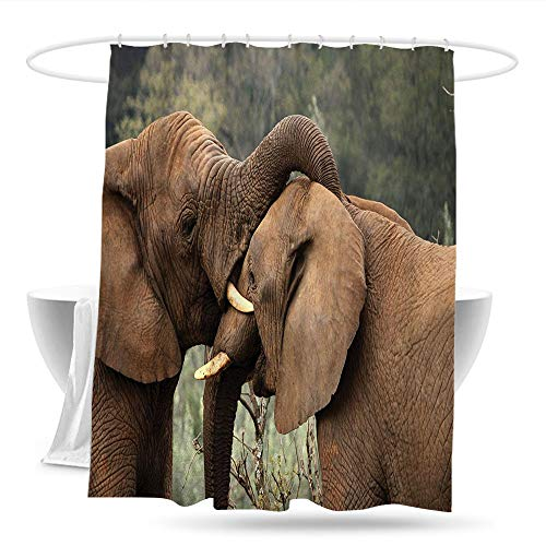 huangfuzz Safari Bathtub Splash Guard Two Wild Savanna Elephants Wrestling Cute Nature Icons South African Animals Photo Waterproof Colorful Funny 59in×70in Brown Green