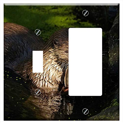 1-Toggle 1-Rocker/GFCI Combination Wall Plate Cover - Otter Pond Eat Water Animal Fish ()