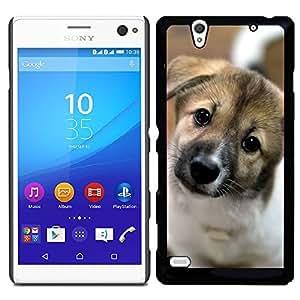 Print Motif Coque de protection Case Cover // V00000805 Patrón del perro de perrito // Sony Xperia C4 E5303 E5306