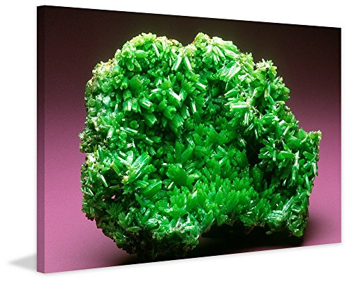 Pyromorphite Crystals (Marmont Hill Smithsonian 'Pyromorphite Green Crystals' canvas Wall Art, 24