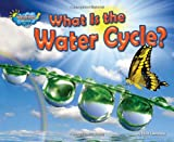 What Is the Water Cycle?, Ellen Lawrence, 1617724025