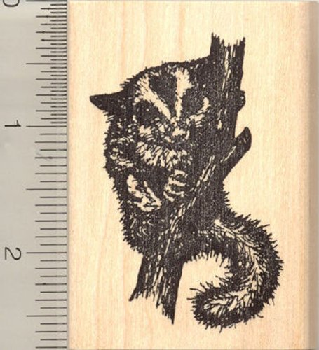 Sugar Glider Rubber Stamp