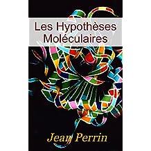 Les hypothèses moléculaires (French Edition)