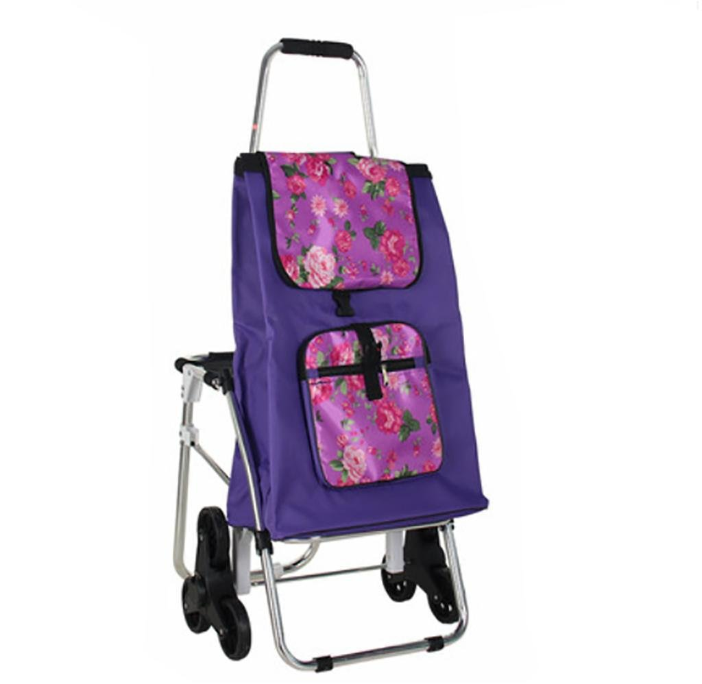 G&M Trolley Dolly with Seat, Shopping Grocery Foldable Cart Tailgate Lightweight Laundry, Shopping, Grocery , C by RulNet