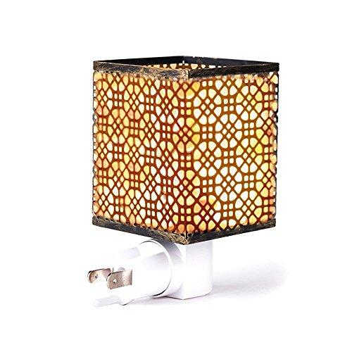 (FLSNT Himalayan Salt Lamp, Himalayan Salt Night Light for Air Purifying, Wall Plug Mini Salt Lamp in Metal Frame with 2 Bulbs)