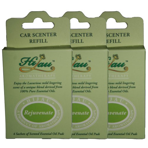 eucalyptus car air freshener - 4