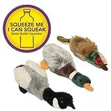 Multipet Migrator Water Bottle Buddies Pheasant 12-Inch Dog Toy, My Pet Supplies