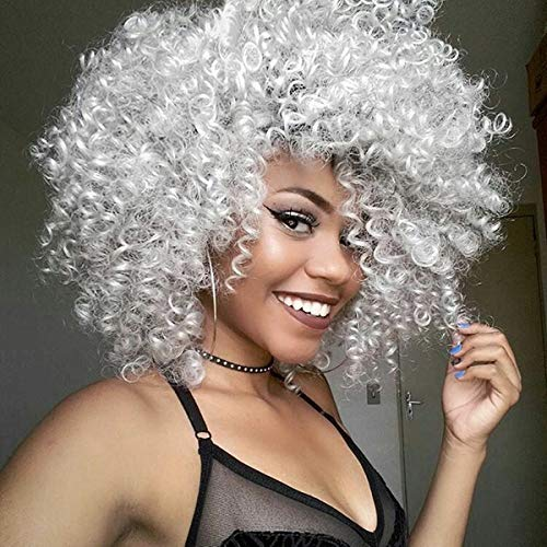 ELIM Wigs for Black Women Afro Kinky Curly Hair Wig African American Womens Short Fluffy Synthetic Wig Heat Resistant Natural Looking Wigs -