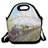 FEAIYEA Steam Train And Railway Lunch Bag Lunch Tote Lunch Box Handbag For Kids And Adults