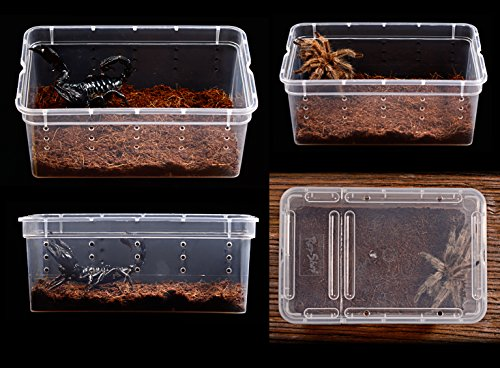 DREAMER.U Portable Reptile Terrarium Habitat Reptile Hatching Container for tarantulas, geckos, crickets, snails, hermit crabs, frogs, lizards, baby tortoise and snakes (Large, White) by DREAMER.U (Image #4)