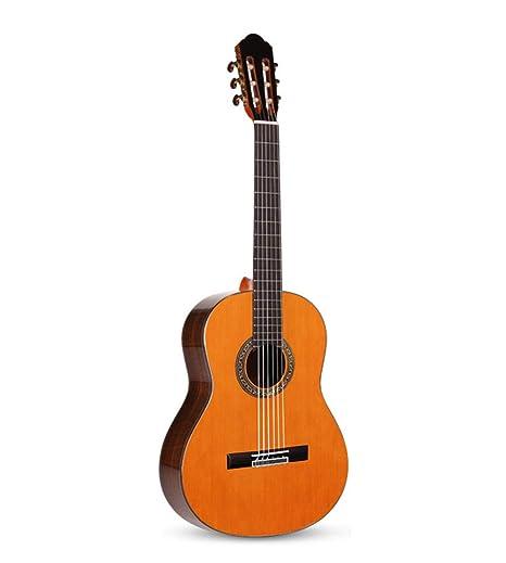 Guitarra clásica, guitarra acústica popular de chapa guitarra de ...