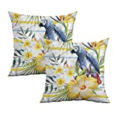 "Khaki home Parrot Square Body Pillowcase Tropic Exotic Parrots Square Pillowcase Covers with Zipper Cushion Cases Pillowcases for Sofa Bedroom Car W 24"" x L 24"" 2 pcs"