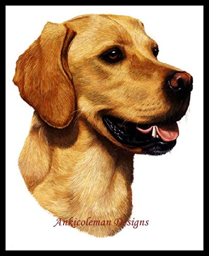 (Zamtac Needlework for Embroidery DIY French DMC -Counted Cross Stitch Kits 14 ct Oil Painting - Yellow Labrador - (Cross Stitch Fabric CT Number: 14CT))