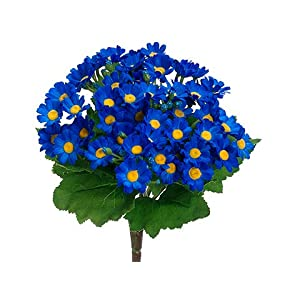 "10"" Mini Daisy Bush Delphinium Blue (pack of 12) 34"