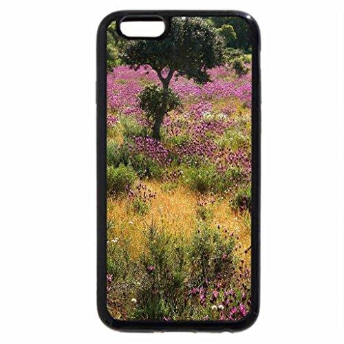 iPhone 6S / iPhone 6 Case (Black) Purple Wild Flower