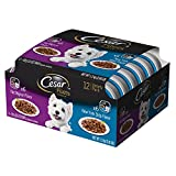 Cesar GOURMET FILETS in Sauce Variety Pack – Filet Mignon Flavor and New York Strip Flavor Dog Food Trays, 3.5 ounce (Pack of 12)