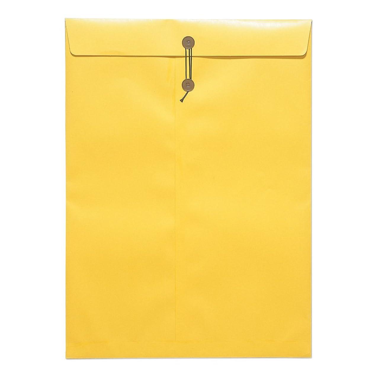 雇う翻訳する当社ビジネスレターケース 【A4対応】【まち20mm】【ジッパー付】 100枚セット (厚紙封筒 書類封筒 ビジネス封筒 クリックポスト対応)