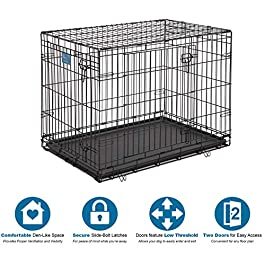 Dog Crate 1636DDU  MidWest Life Stages 36″ Double Door Folding Metal Dog Crate   Divider Panel, Floor Protecting Feet, Leak-Proof Dog Tray   36L x 24W x 27H Inches, Intermediate Dog Breed